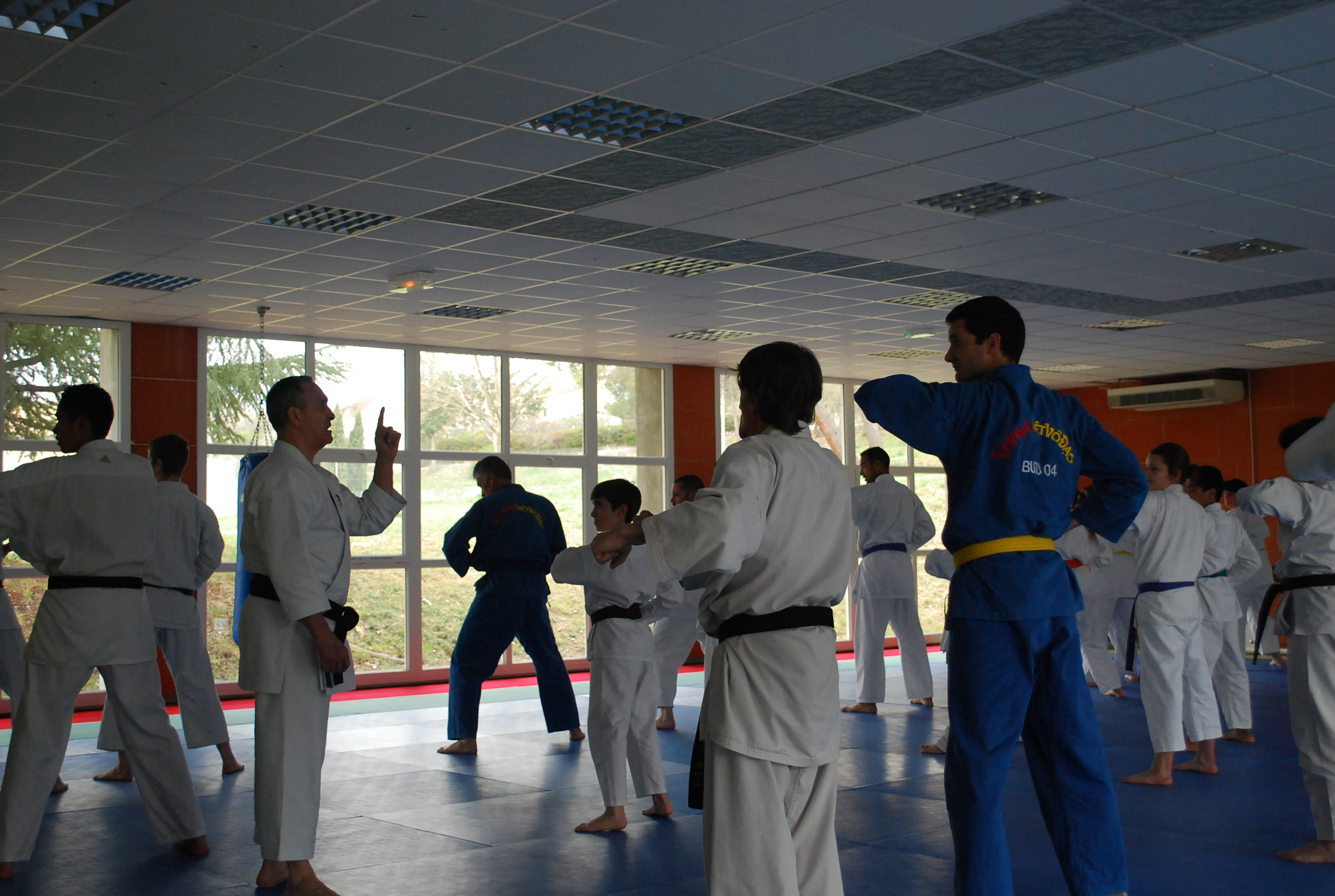 http://karate-manosque.fr/wp-content/uploads/2017/03/Stage-shito-2017_0009.jpg